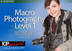 MACRO PHOTOGRAPHY LEVEL 1 - Beginner Level Course