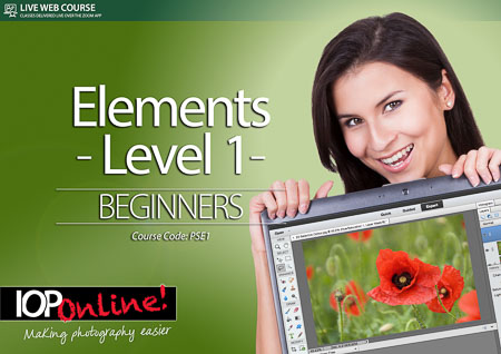 ELEMENTS LEVEL 1 - Beginner Level Course