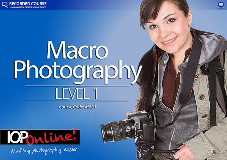 BEGINNERS MACRO PHOTOGRAPHY - Level 1 Course