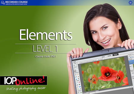 ELEMENTS LEVEL 1 - Beginners